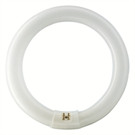 Philips 22W Cool White Circular Fluorescent Tube