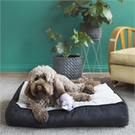 Happy Tails 75 x 50cm Faux Suede Pet Bed