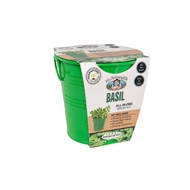 Mr Fothergill's Boutique Gardens Basil Grow Kit