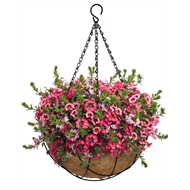 Lotus 30.5cm Hanging Basket With Liner
