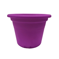 Eden 15cm Round Transparent Purple Plastic Pot
