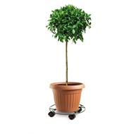 Eden 30cm Heavy Duty Round Pot Plant Trolley