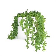 UN-REAL 17cm Artificial String Of Pearls Plant In White Pot