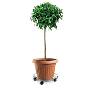 Eden 33cm Round Pot Plant Trolley With Rails