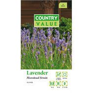 Country Value Lavendar Munstead Flower Seeds