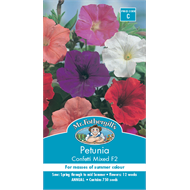 Mr Fothergill's Mixed Confetti Petunia Flower Seeds
