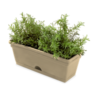 Whites Vertical Garden Mix'n'Match Herb Pot - Latte