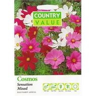 Country Value Mixed Sensation Cosmos Flower Seeds