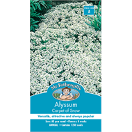 Mr Fothergill's Alyssum Carpet Of Snow Flower Seeds