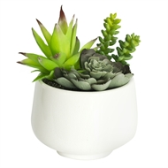 UN-REAL 19cm Artificial Succulent Plant Trio In White Pot
