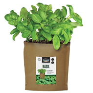 Mr Fothergill's Basil Grow Pouch Bag