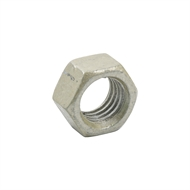 Zenith M12 Treated Pine Hex Head Nuts - 50 Pack
