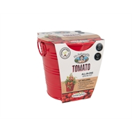 Mr Fothergill's Boutique Gardens Tomato Grow Kit