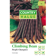 Country Value Purple Champion Climbing Bean Vegetable Seeds
