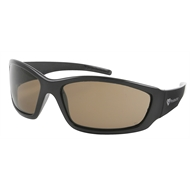 Protector Brown S76B Safety Spectacle