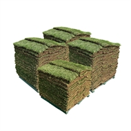 Sir Walter DNA Certified Buffalo 190m² Soft Leaf Buffalo Turf - Pallet