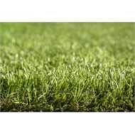 Tuff Turf 3.75 x 1m Real Tuff Synthetic Turf