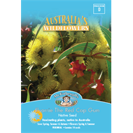 Mr Fothergill's Illyarie Red Cap Gum Flower Seeds