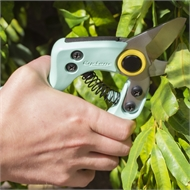 Cyclone Compact Bypass Pruner