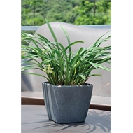 Eden 28 x 26cm Granite Self Watering Square Plastic Pot