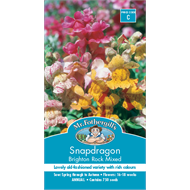 Mr Fothergill's Snapdragon Brighton Rock Flower Seed
