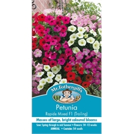 Mr Fothergill's Petunia Rapide Mixed Flower Seed