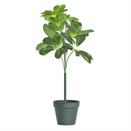 UN-REAL 52cm Artificial Umbrella Tree