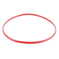 Aquapro Replacement Pressure Filter Lid O-Ring
