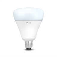 WiZ G100 E27 1055lm Daylight Dimmable Wi-Fi Smart Lamp