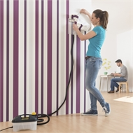 Wagner W15 SteamPerfect Wallpaper Steamer