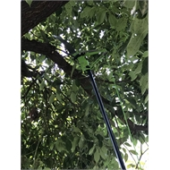 Saxon Telescopic Tree Pruner