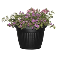 288mm Flowering Combo Pink Mix In Black Vesna