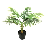 Lotus Collection 70cm Hawaiian Palm Artificial Plant