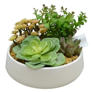 UN-REAL 16cm Artificial Succulent Quad Plant In White Pot