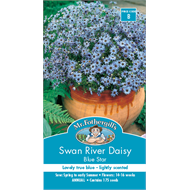 Mr Fothergill's Swan River Daisy Blue  Flower Seeds