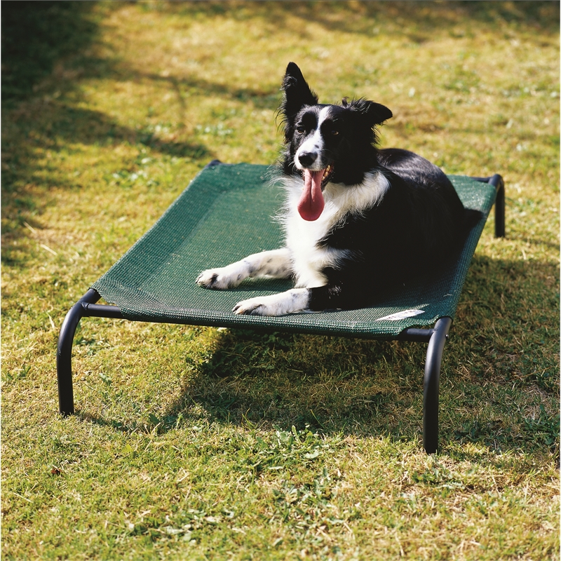 Coolaroo Medium Green Pet Bed