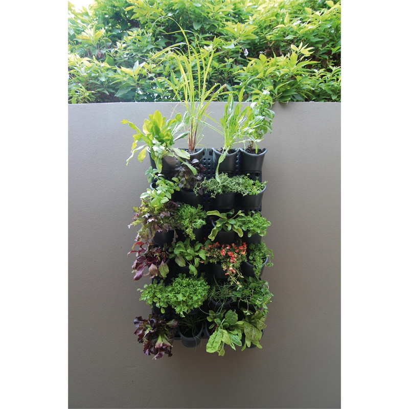 Indoor Vertical Garden Kit : Holman GreenWall Vertical Garden Kit I/N 2940859  Bunnings Warehouse