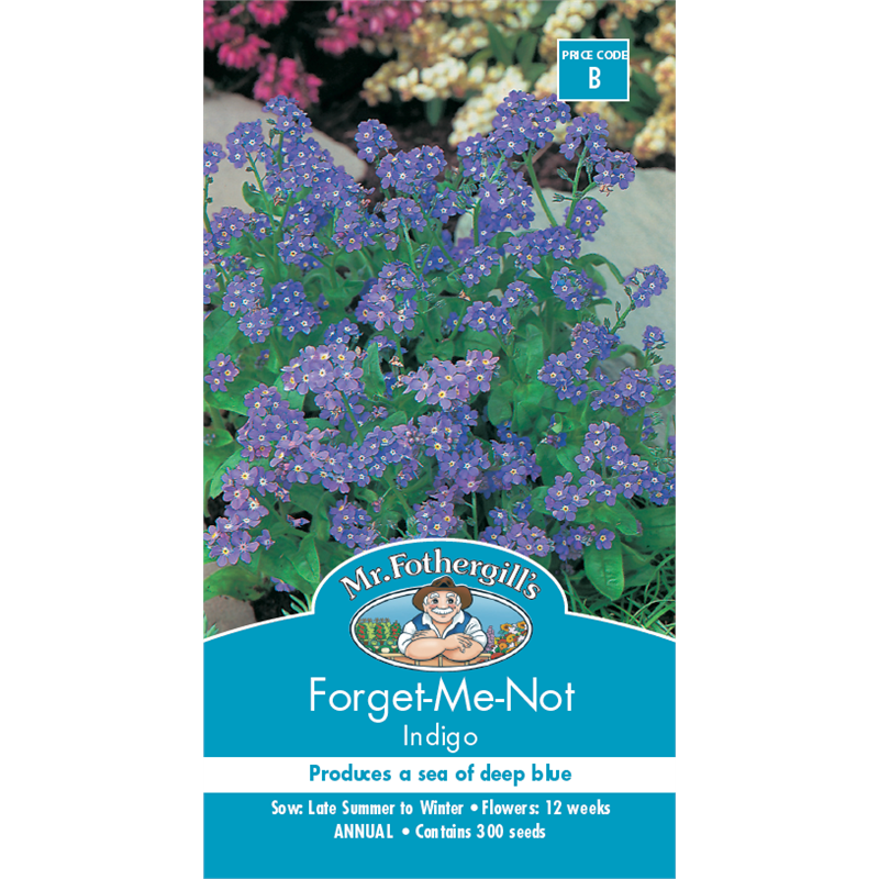 mr fothergill 39 s forget me not flower seeds bunnings. Black Bedroom Furniture Sets. Home Design Ideas