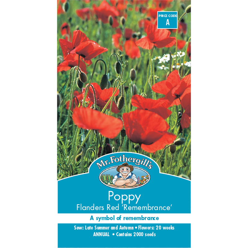 Mr Fothergills Poppy Flanders Red Flower Seeds Bunnings Warehouse