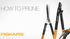 Choosing The Right Fiskars Pruning Tool