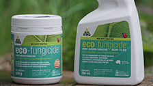 About Eco Fungicide