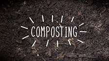 About Composting with Tumbleweed