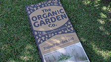 About Raised Garden Beds