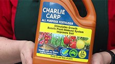 About Charlie Carp Liquid Fertiliser